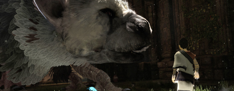 The Last Guardian development is still going, might release for PS4
