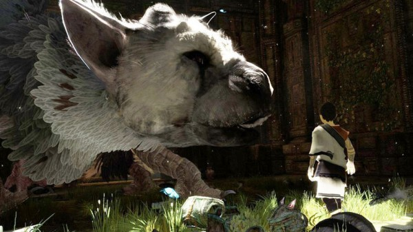 Photo of The Last Guardian reconfirmed to release this year and new info