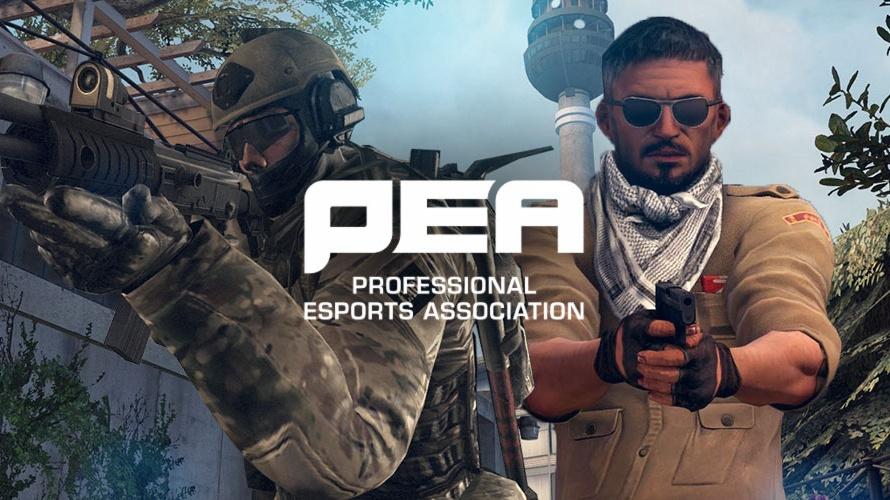 Photo of انطلاق مؤسسة Professional Esports Association العام القادم وتوجه جديد للرياضات الإلكترونية