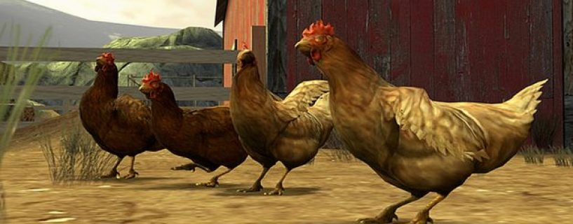دجاجات كاونتر-سترايك تثير الجدل في جريمة جديدة ترتكبها على الساحة التنافسية