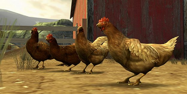 Counter-Strike: Global Offensive Chickens