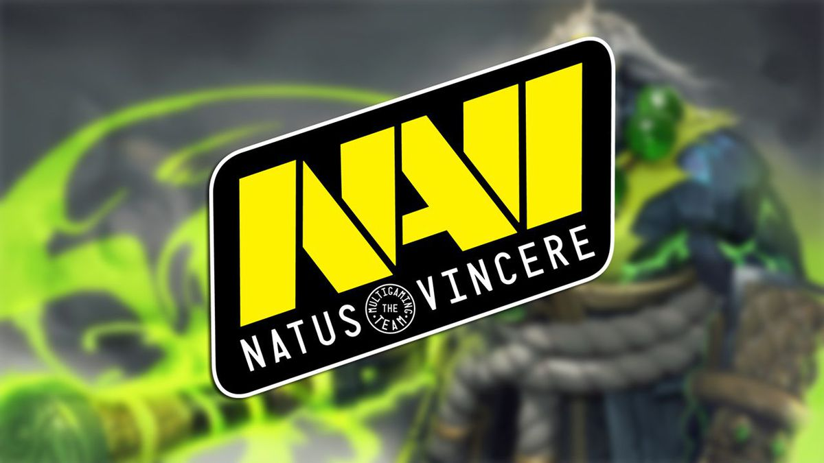 Na'Vi complete their competitive roster for Pro Circuit in